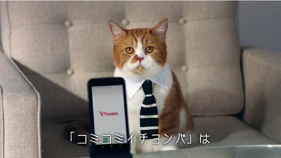 Y!mobile06.JPG
