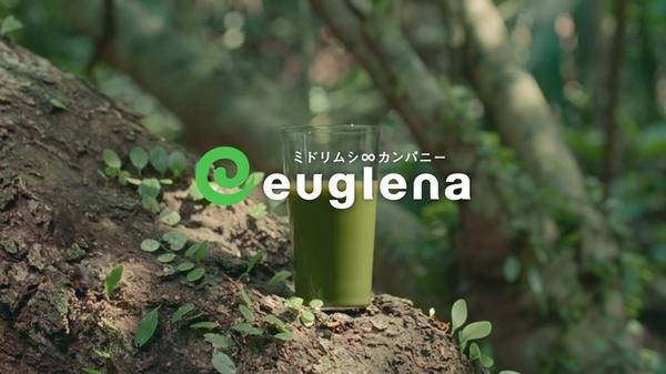 euglena10.JPG