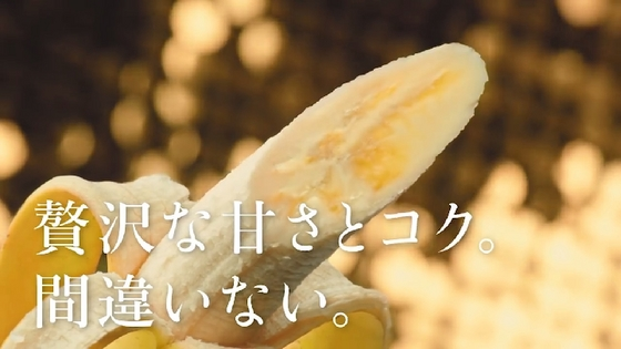 gold-premium06.JPG