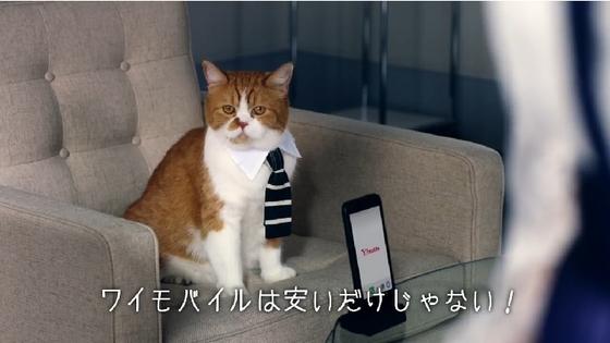 Y!mobile04.JPG