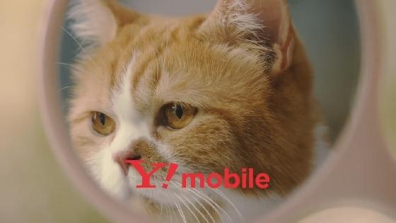Y!mobile17.JPG