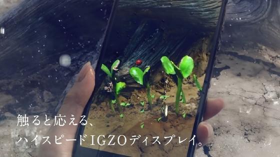 aquos15.JPG