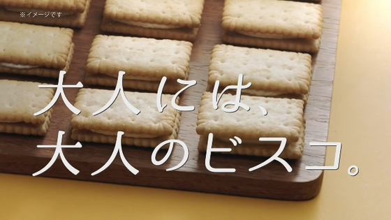 bisco13.JPG